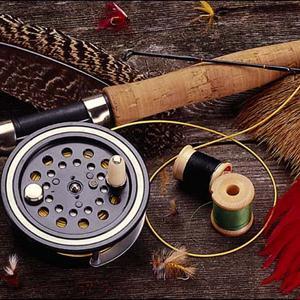 Охотничьи и рыболовные магазины Дегтярска