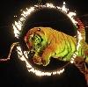 Цирки в Дегтярске